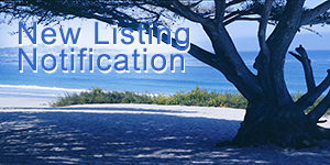 New Carmel Real Estate Listings